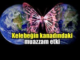 Kelebeğin kanadındaki muazzam etki