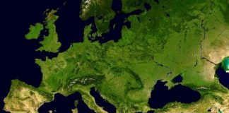 Dünyada yaşam Amerika'da mı başladı Anadolu'da mı?