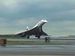 yunusların özellikleri uçak modellerine örnek sonar