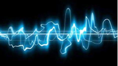 yunusların gülümsemesi sevgi boyutu varlıkları yunus terapi ses dalgaları