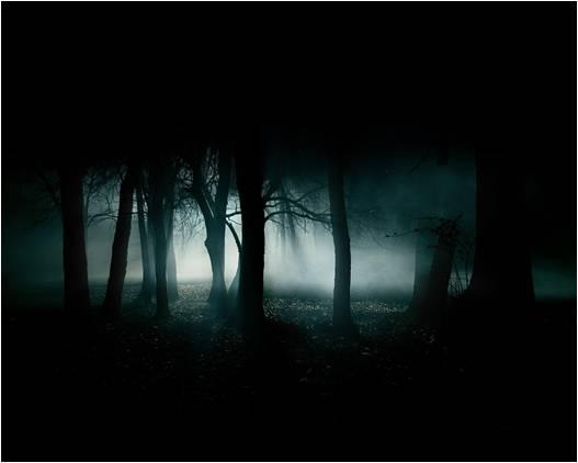 ormanın
