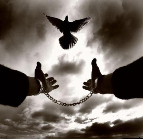 özgür özgürlük
