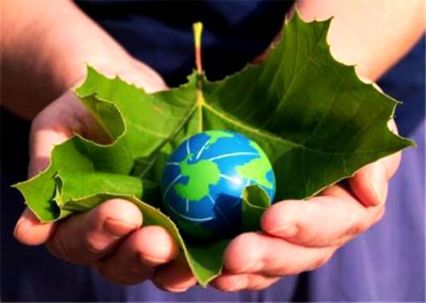 Alternatif enerji kaynakları: Yeşil enerji