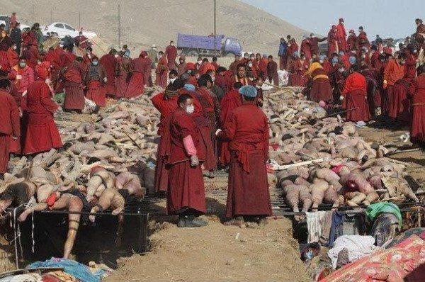çin budist rahip salgın hastalık
