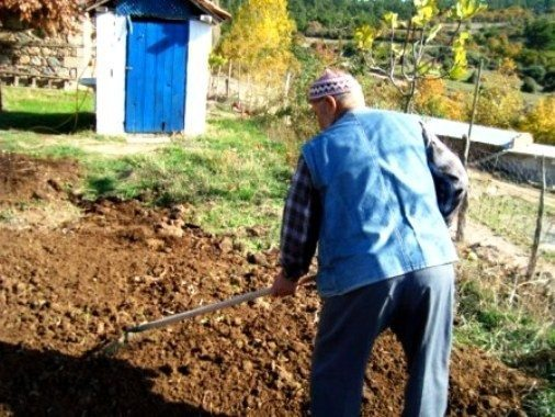 Akış döngüsünün kutsal bahçıvanları