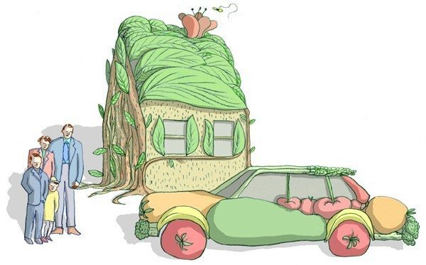 tanrı rolü ev organik gıda