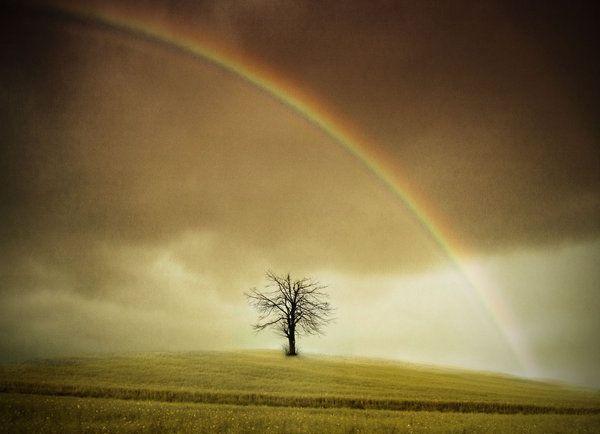 Günlük yaşamın hiddetli akışına kendimizi bırakmış vaziyette, nereye sürüklendiğimizi bile bilmeden, bu yolculuk nereye?