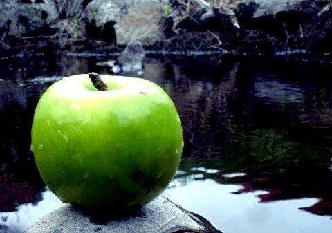 Neden elma?