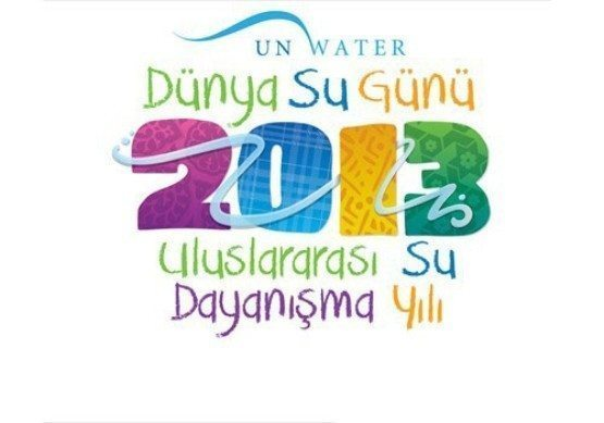 2013logo_turkish