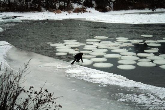 Buz Halkaları