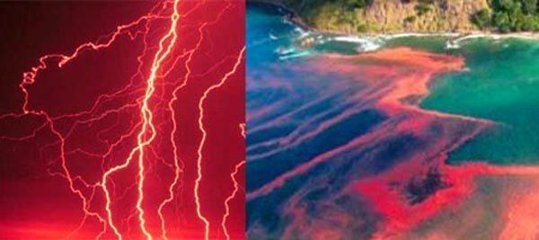 Kızıl Yağmurlar