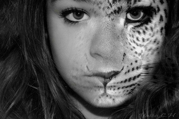 değişim soru aslan kaplan jaguar kız güzel