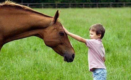 at ve çocuk
