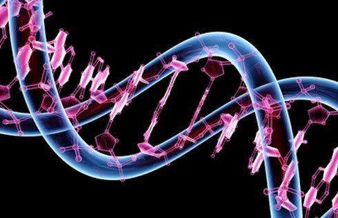 gen haritası-gen