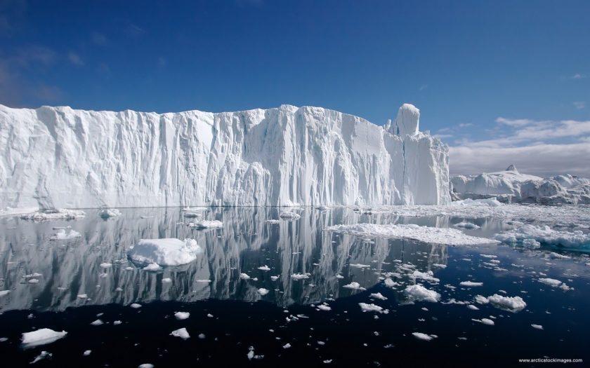 buz kuzey kutbu