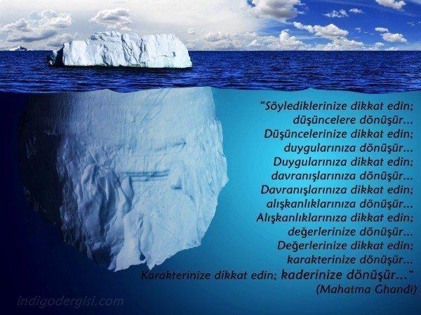 Iceberg indigo