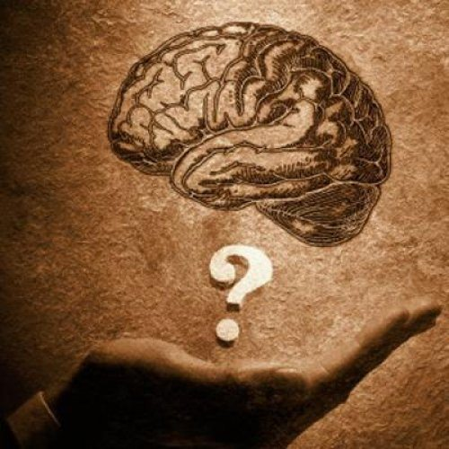 bilgi bilmek ilim irfan