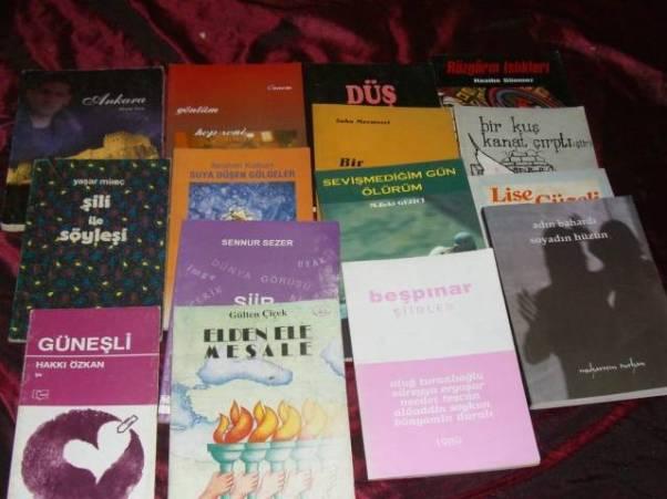 Türkiye'de şiir ve şair