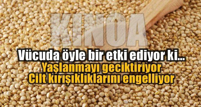 Kinoa: Yeni çağın mucize besini Quinoa