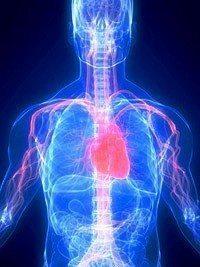kalp-damar-hastalik-sertligi-krizi-10