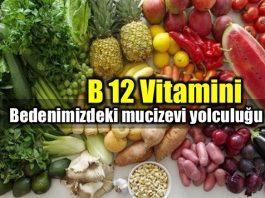B12 Vitamini faydaları bedenimizdeki mucizevi yolculuğu