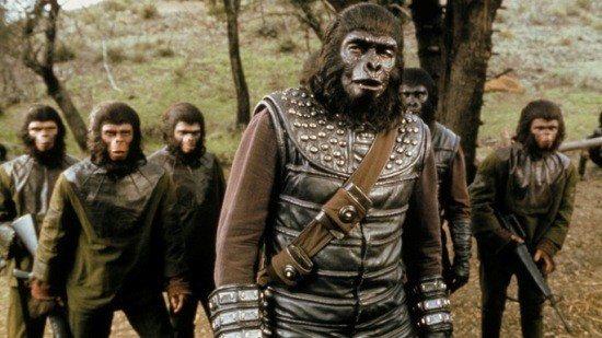 maymunlar ve insanlar-indigodergisi
