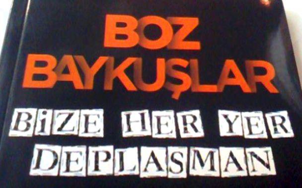 Boz Baykuşlar-Bize Her Yer Deplasman-indigodergisi