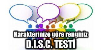 renkler karakter analizi disc testi insan kaynakları hangi iş size göre