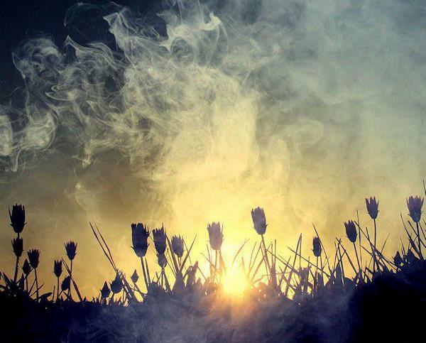 Zamansız rüzgarda hayat var!