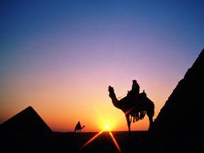 mısır piramit gün batımı deve çölde sahra çölü