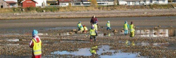 norveç çocuklar sosyal sorumluluk