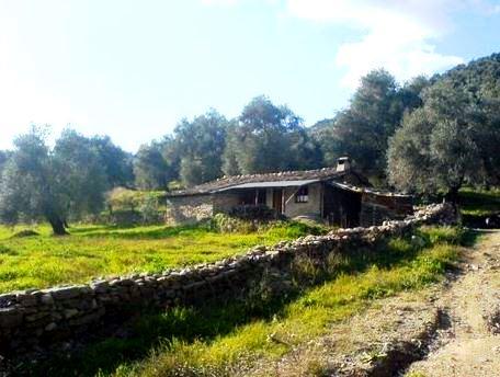 ipek hanım çiftliği pınar kaftancıoğlu (8)