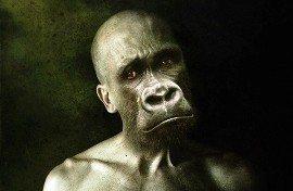 maymun insan eğitim