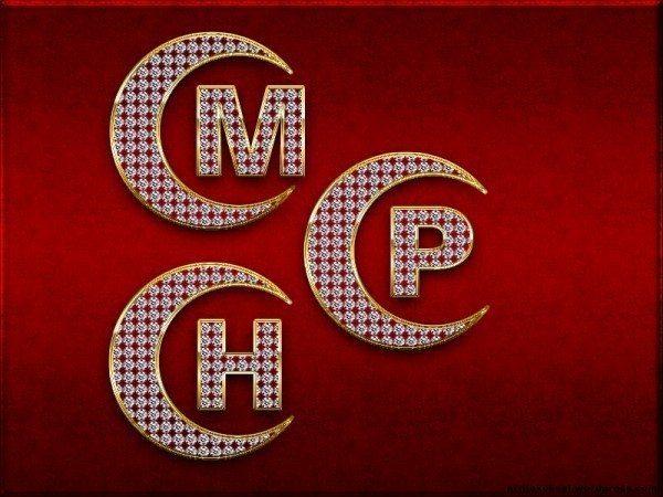 MHP milliyetçi hareket partisi oy seçim 2015