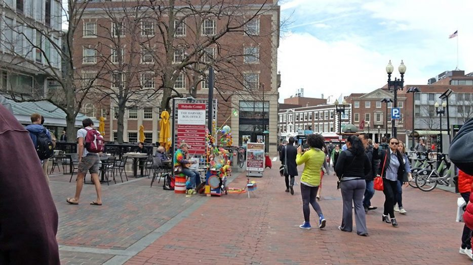 Harvard Üniversitesi alanındaki bir sokak müzisyeni