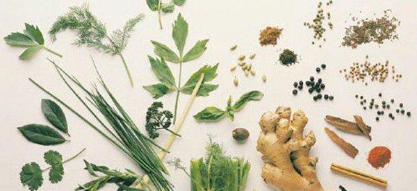 tıbbi ve aromatik