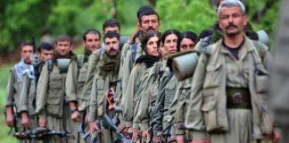 Türkiye'nin IŞİD ve PKK Operasyonları