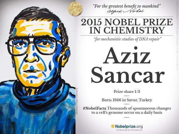 aziz sancar 2015 nobel ödülü kimya dna kanser araştırması