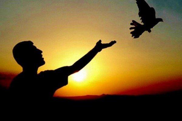 savaş barış terör ankara suruç