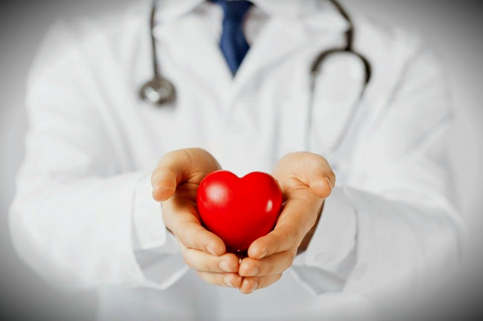 organ doku bağışı nakli