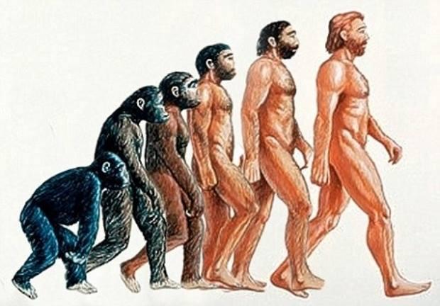 yaratılış evrim tanrı yaratıcı