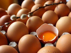 yumurta günlük ihtiyaç