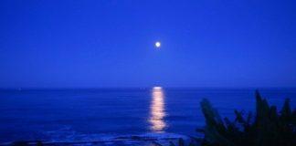denizin dibe inince deniz manzarası ay karanlık akşam yakamoz