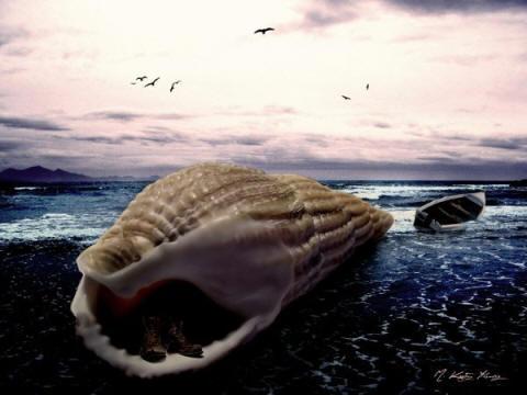 reenkarnasyon gokceada raku mediha askin deniz kabugu
