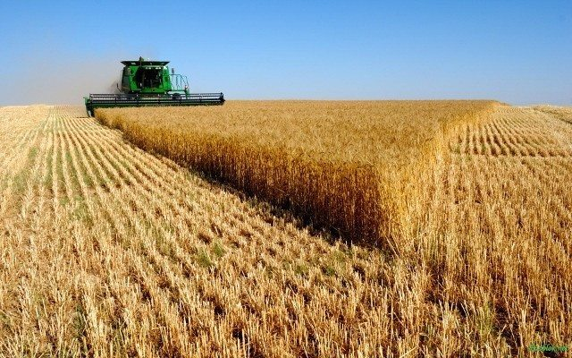 tarım sanayileşme kırsalı kaldırma projesi kalkınma teşvik istihdam işçi köylü Kırsala Dönüş Projesi