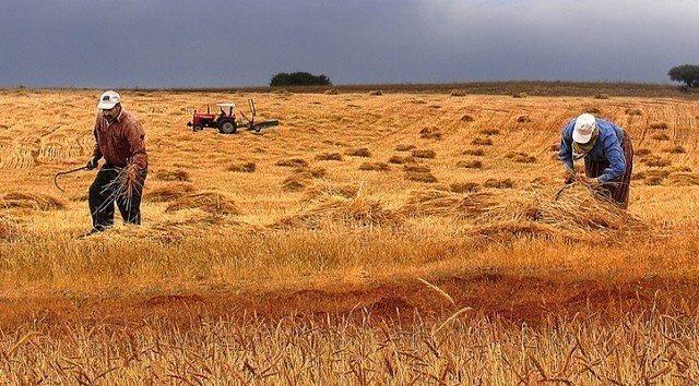 küresel tarım raporu kuraklık Kırsala Dönüş Projesi 5 aralık dünya toprak günü