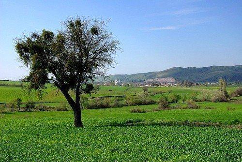 kirsal_tarim_tekstil_turkiye_anadolu_18_001 Kırsala Dönüş Projesi