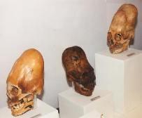 nazca çizgileri peru arkeolojik kazılar