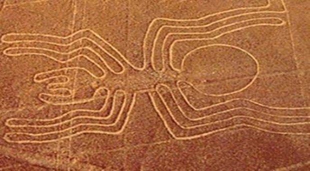nazca çizgileri dev hayvan figürleri