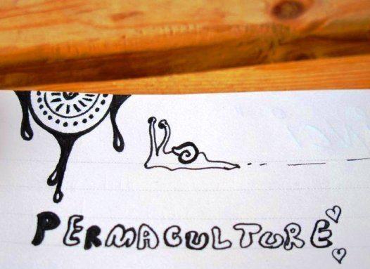permakultur 1 turkiye bulusmasi ekoloji mimari